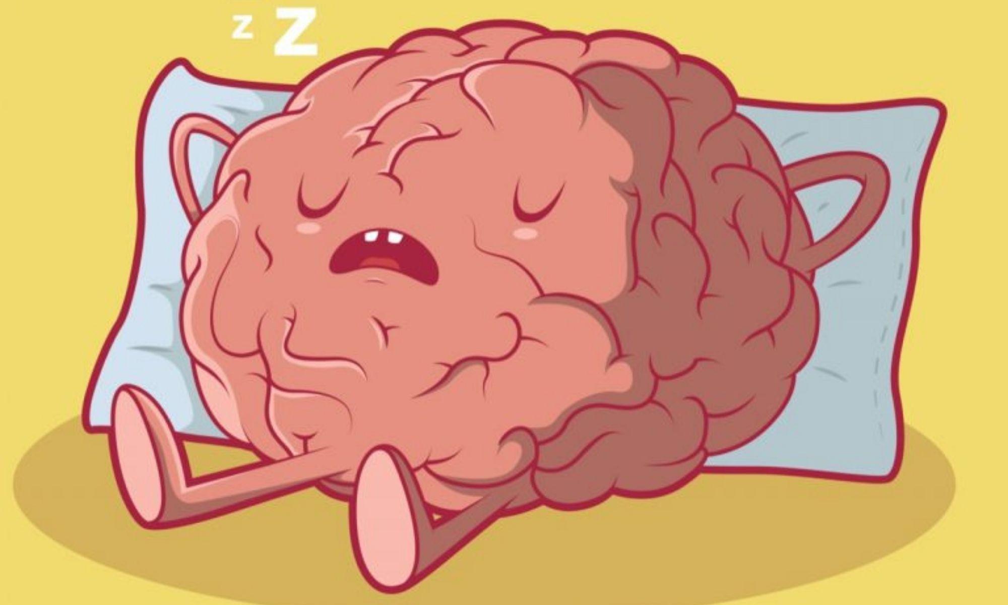 Упражнения для мозга и памяти взрослого человека на каждый день