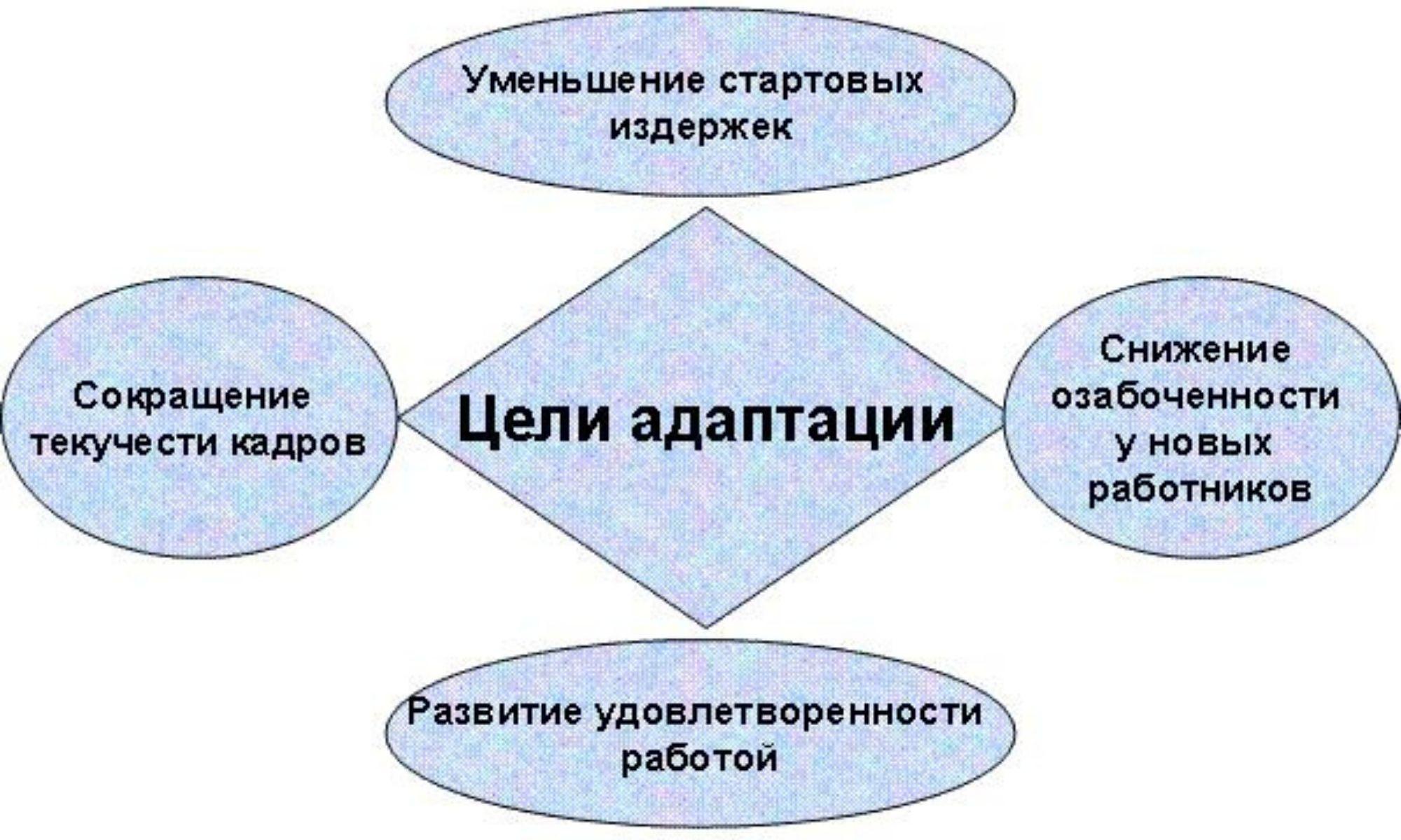 Что такое адаптация: виды адаптации персонала