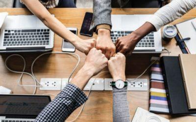 Как создать эффективную команду: основные черты командной работы