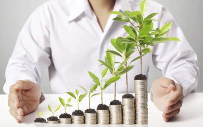 Обучение инвестированию – как научиться инвестировать с нуля?